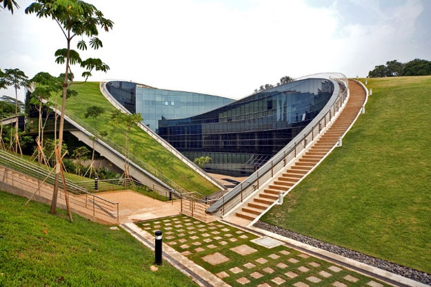 Nanyang Technological University, green roofs